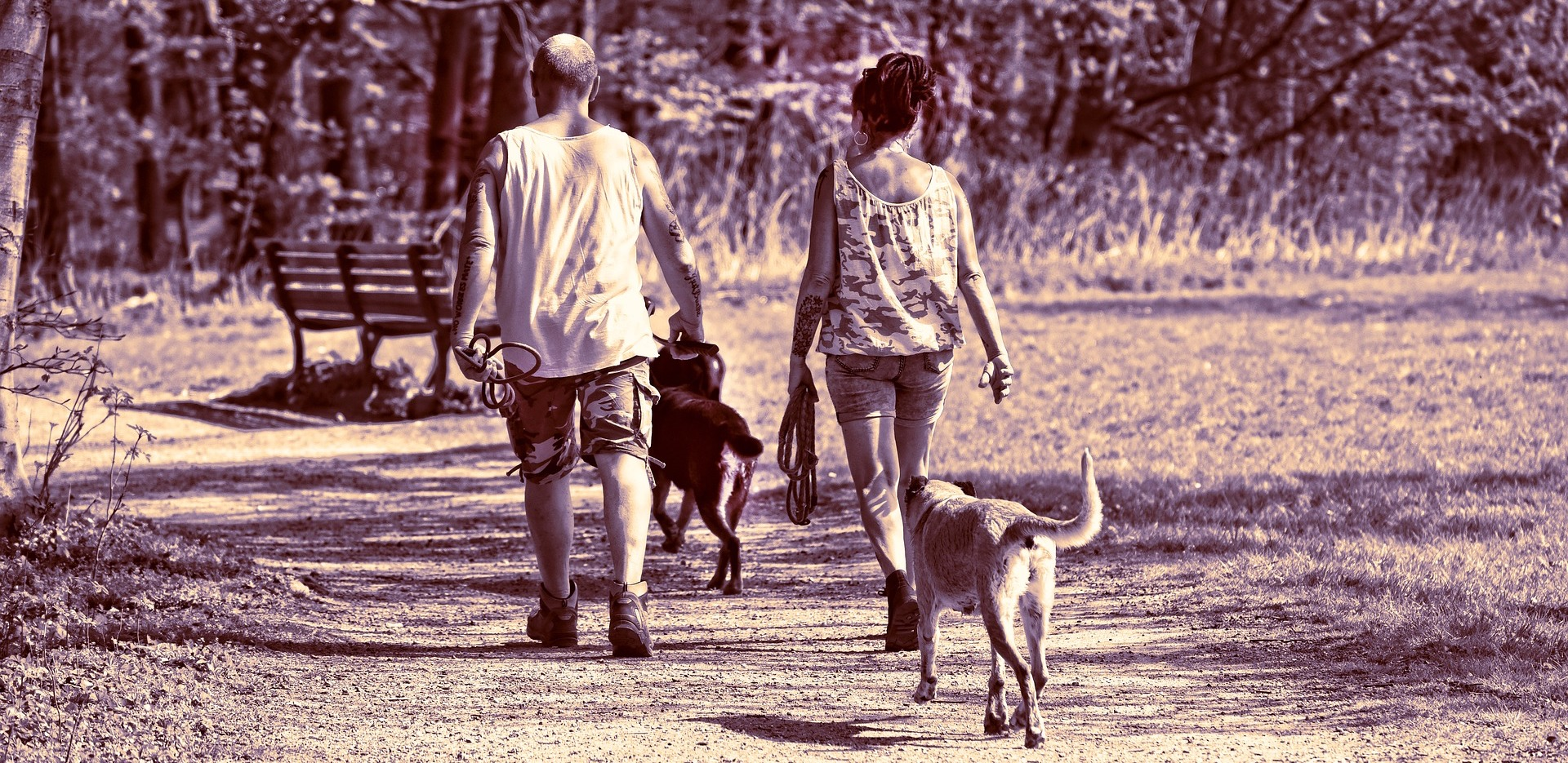 Couple and their dogs